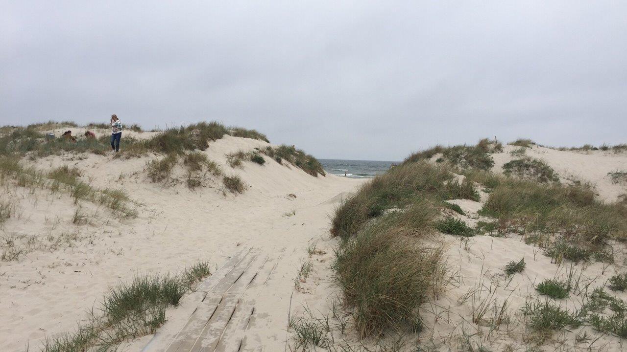 Vita sandstränder vid Sandhammaren.